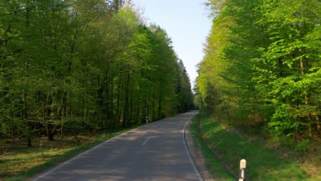Mit dem Auto durch grünen Frühlingswald – Video