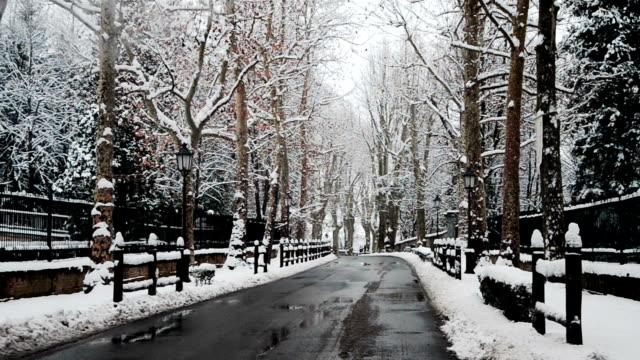 Car Driving in winter landscape video