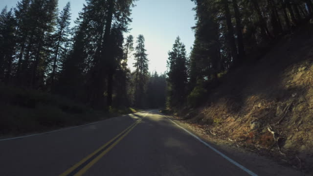 pov car driving in yosemite national park, tioga pass - passo montano video stock e b–roll