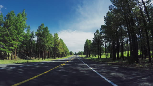 POV car driving on a mountain pass in the USA
