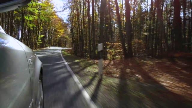 car driving on a street in autumn - гладкая поверхность стоковые видео и кадры b-roll