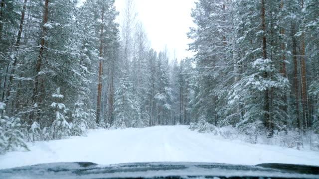 vidéos et rushes de une voiture roule le long d'une route enneigée de forêt dans une chute de neige. - pare brise