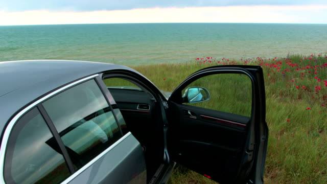 Car is parked with opened door at the seaside video