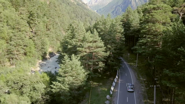Car moving along highway among forest and mountains. Car trip family on vacation video