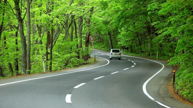 車での森に霧 road を進みます。 - 曲線点の映像素材/bロール