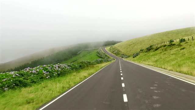 car point of view on country road - drive on flores island on azores / portugal - paesaggio collinare video stock e b–roll