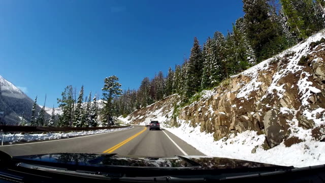 Car travel - bright winter day video