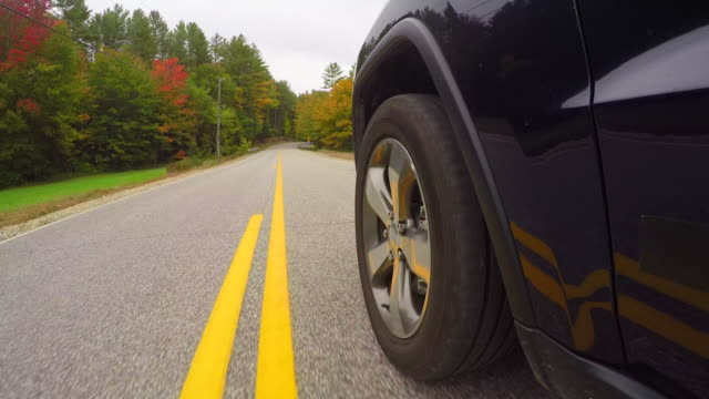 TIME LAPSE: Car tyre driving along double yellow line toad trough autumn forest video