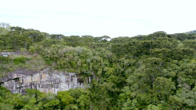 Caracol Falls' Landscape in Canela, RS, Brazil video