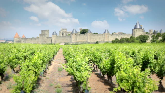 Carcassonne, France The Medieval town of Carcassonne provence alpes cote d'azur stock videos & royalty-free footage