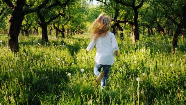 Carefree blonde girl runs through the old apple orchard. Steadicam shot