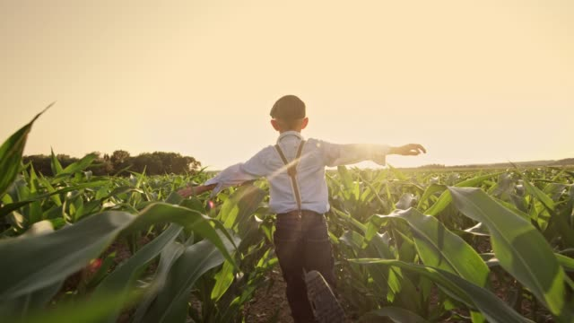 Carefree boy running in sunny,rural corn field,real time