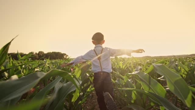 日当たりの良い、農村のトウモロコシ畑、リアルタイムで走っている屈託のない少年 - 男の子点の映像素材/bロール