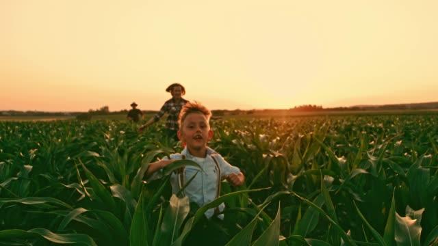 sorglösa odlarfamiljens körs i idylliska, lantliga sädesfält på solnedgången, realtid - enbarnsfamilj bildbanksvideor och videomaterial från bakom kulisserna