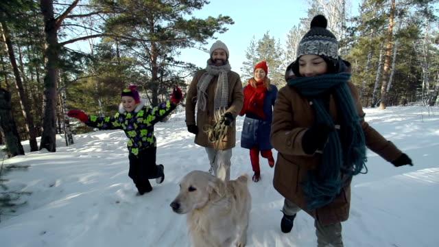 stockvideo's en b-roll-footage met zorgeloos winter weekend - family winter holiday