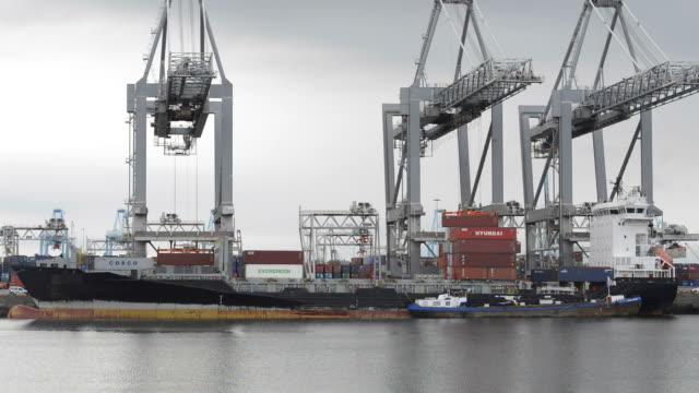 nave cargo nel porto - rotterdam video stock e b–roll