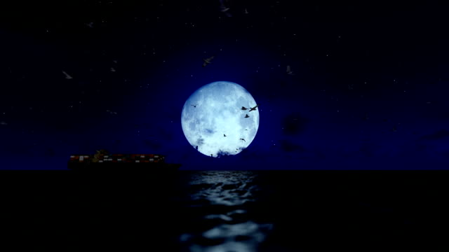 Cargo ship sailing, full moon and seagulls, with sound video
