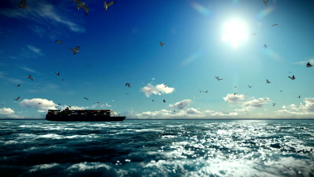 Cargo ship sailing, timelapse clouds and seagulls, with sound video
