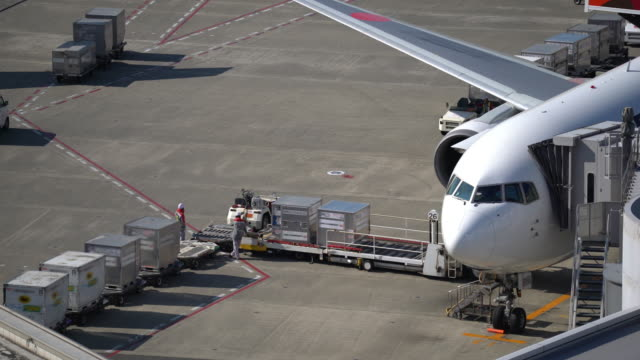 Cargo unloading from airplane for air freight cargo and business import export logistic concept. 4K UHD Cargo unloading from airplane for air freight cargo and business import export logistic concept., Apple ProRes 422 (HQ) 3840x2160 Format airfield stock videos & royalty-free footage