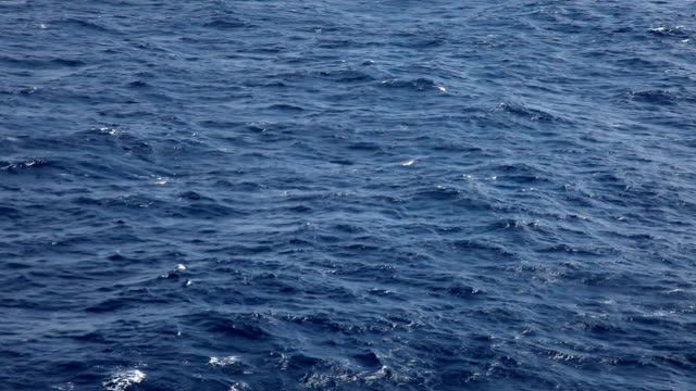 Caribbean Cruise - Water surface video