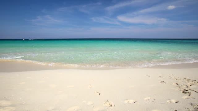 Caribbean sea coastline video