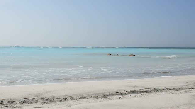 Caribbean seascape waves Caribbean seascape waves oceania stock videos & royalty-free footage