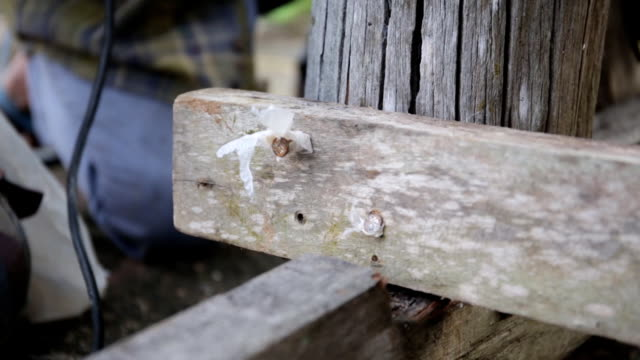 Carpenter use equipment to repare the furniture video