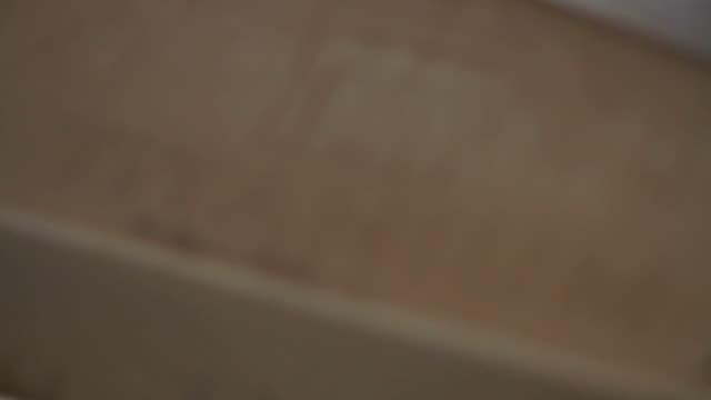 Carpet Wand Macro video