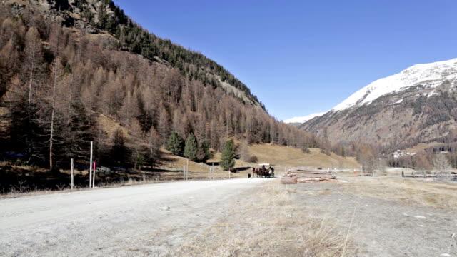 Carriage in Val Roseg in Svitzerland video
