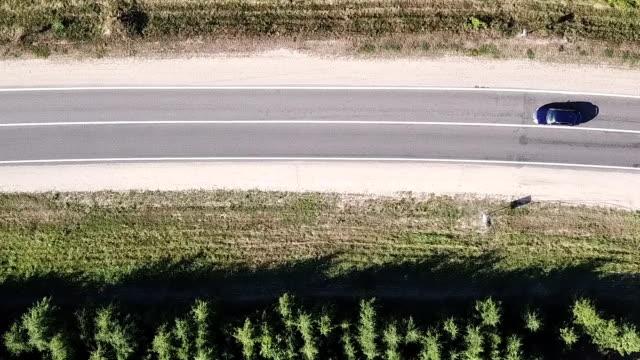 vídeos y material grabado en eventos de stock de coche coches en la carretera a través del bosque. - largo longitud