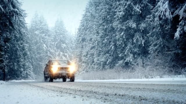 Cars Drive Through Forest In Snowstorm video