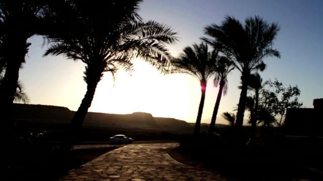 cars pass by the picturesque road - ekoturystyka filmów i materiałów b-roll