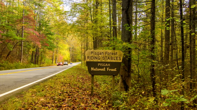 Cars Traveling in Pisgah National Forest with Fall Colors video