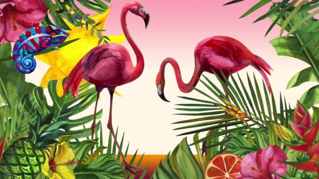 cartoon flamingo bird, chameleon and butterfly. the sun is moving. watercolor tropical wildlife. hand drawn jungle nature, illustration - palm tree filmów i materiałów b-roll
