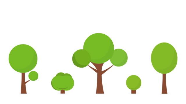 cartoon growing tree animacja, alfa matowy . 4k białe tło. - drzewo filmów i materiałów b-roll