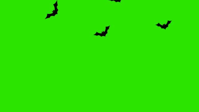 Cartoon Halloween Bats Flying through the Screen on a Green Screen