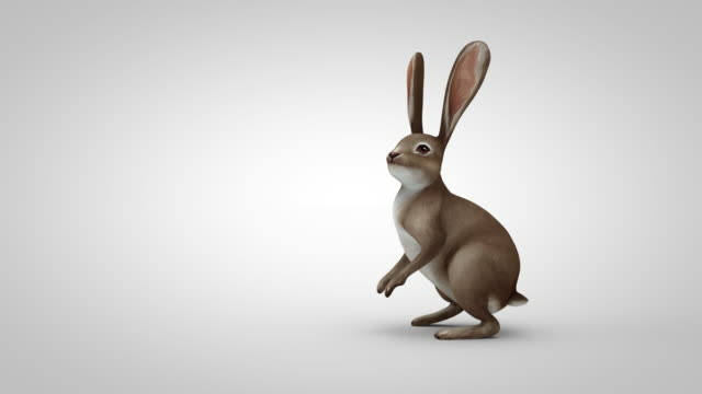cartoon rabbit running to the middle of the screen, standing up, looking around and runs away
