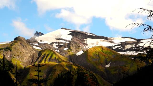 cascade range pacific crest trail heliotrop ridge mt. baker - lupine stock-videos und b-roll-filmmaterial