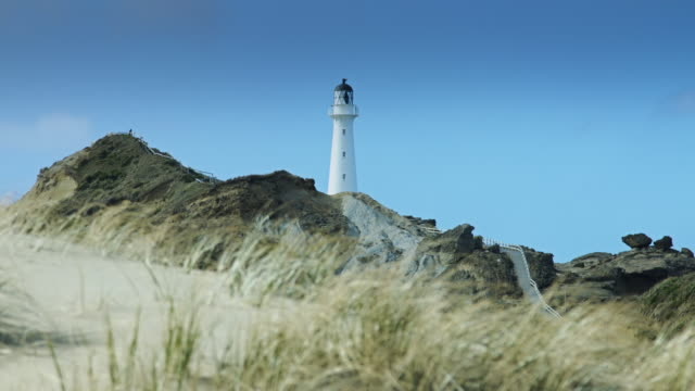 Castlepoint Lighthouse video