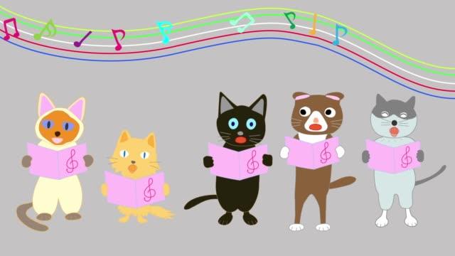 cat concert