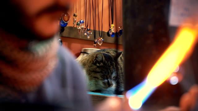 Cat in Glass Art Store