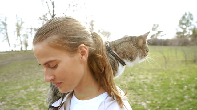 ひもに猫。女の子は彼女の肩に座っている猫を歩き - ネコ科点の映像素材/bロール