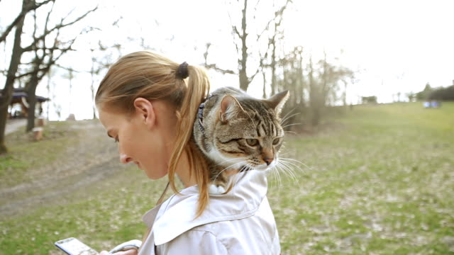 cat on a leash. a girl is walking with a cat that sits on her shoulder - felino video stock e b–roll