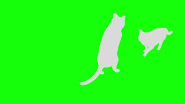 cat силуэт двуногих ходить петли шаблон g - сбежавший из дома стоковые видео и кадры b-roll