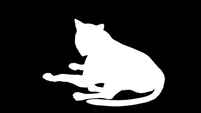 Cat (Loopable) video