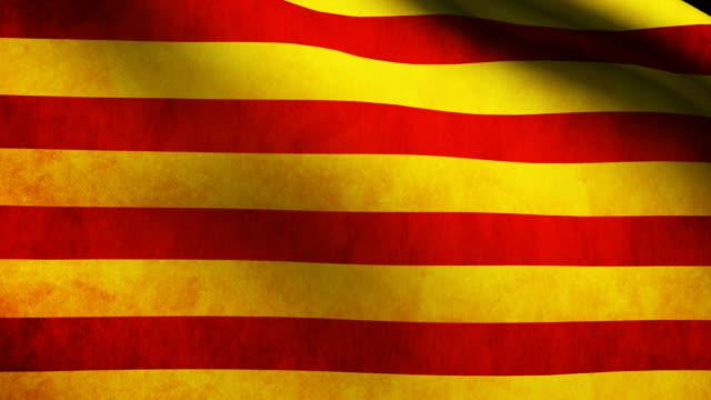 catalonia flag - lleida стоковые видео и кадры b-roll