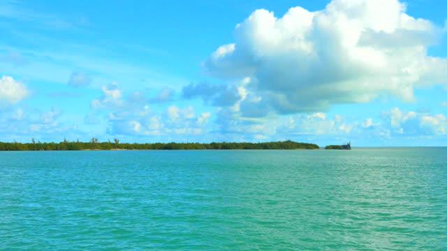 4K Catamaran Blue Tropical Water, Small Palm Tree Island