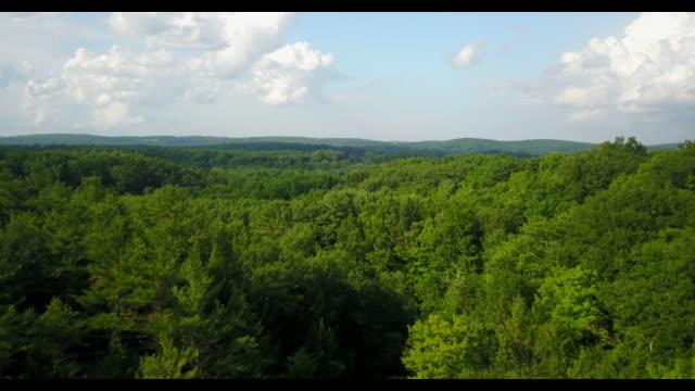 drone aereo dell'appalachia mountains catskill - monti appalachi video stock e b–roll