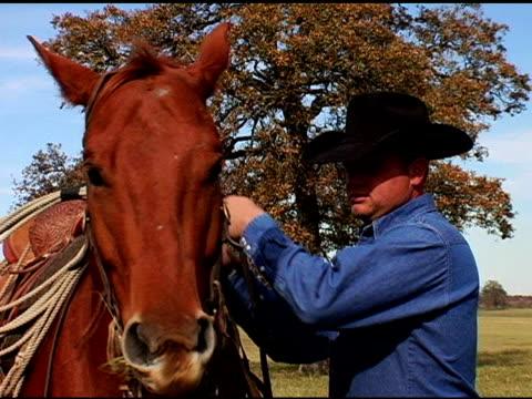 stockvideo's en b-roll-footage met caucasian cowboy feeds brown horse on texas ranch - alleen één mid volwassen man