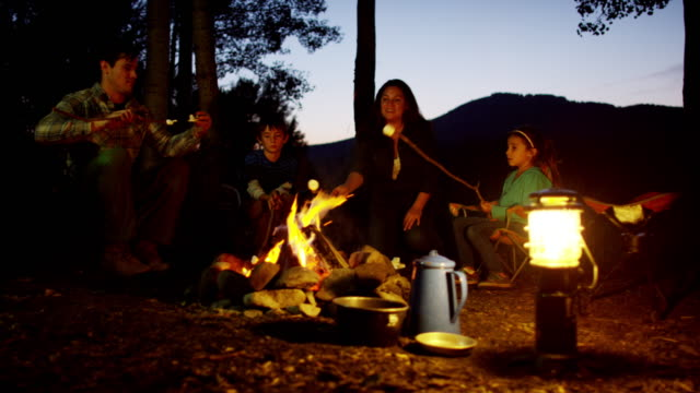 caucasian family camping and toasting marshmallows america vacation - campeggio video stock e b–roll